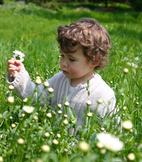 Photo Enfant Nature